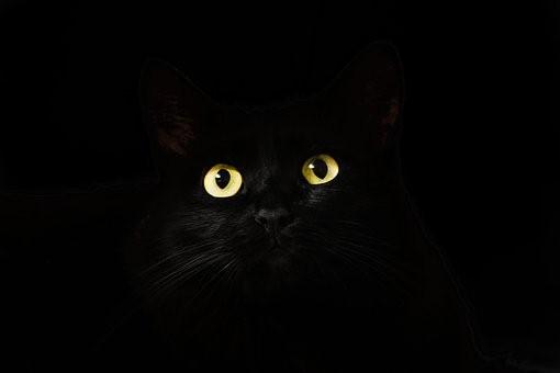 Magia negra Síntomas de magia negra